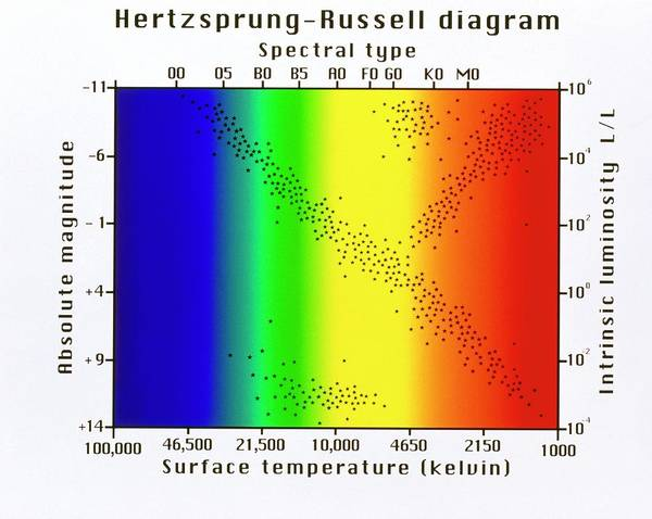 Evolution Photograph - Hertzsprung-russell Diagram Of Stars by Mehau Kulyk/science Photo Library