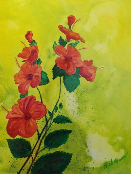 Wall Art - Painting - Hibiscus 1 by Rich Mason