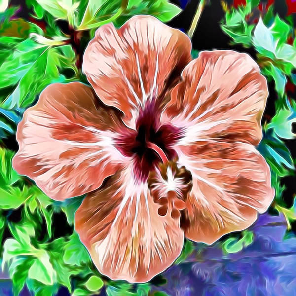 Mixed Media - Hibiscus by Pamela Walton