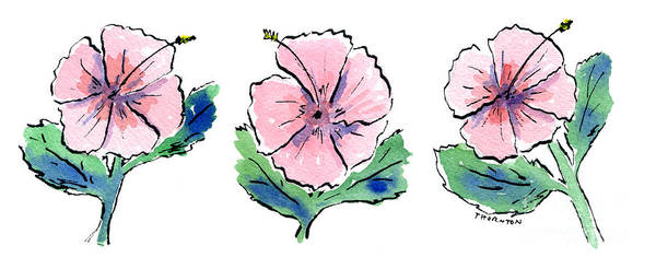 Hibiscus Flower Painting - Hibiscus Trio by Diane Thornton
