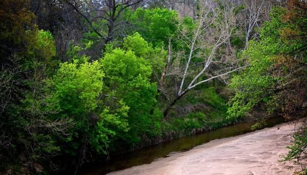 Photograph - Hickory Creek 6899 by Ricardo J Ruiz de Porras