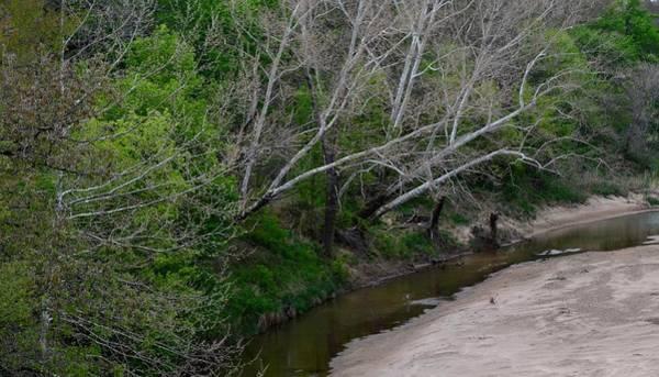 Photograph - Hickory Creek 6902 by Ricardo J Ruiz de Porras
