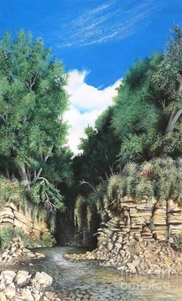 Hidden Canyon Art Print