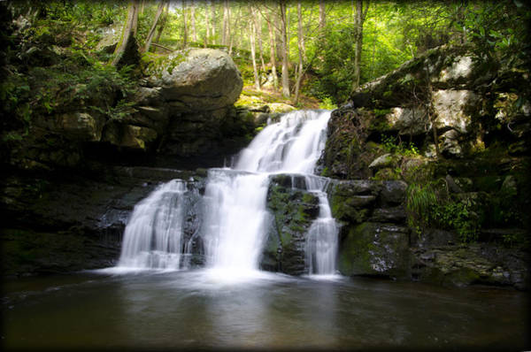Poconos Wall Art - Photograph - Hidden Cascades Pocono Mountains Pa. by Bill Cannon