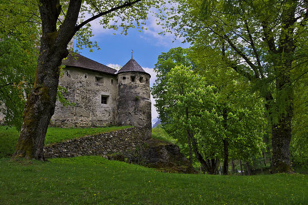 Photograph - Hidden Castle by Ivan Slosar