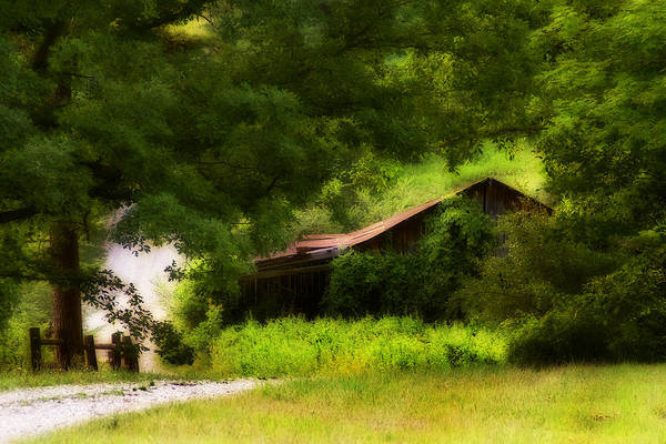 Photograph - Hidden Down The Road by Melinda Ledsome