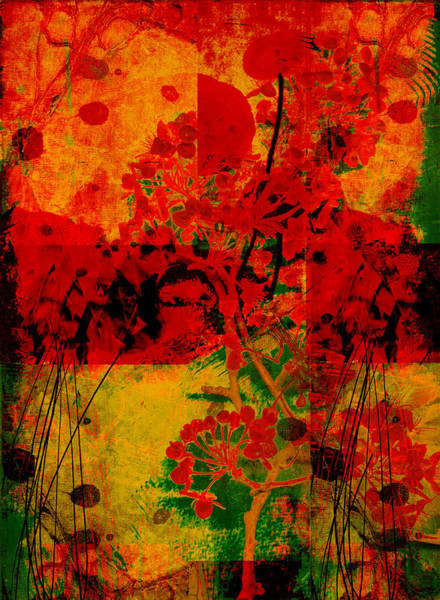 Red Poppy Mixed Media - Hidden Garden by Ann Powell