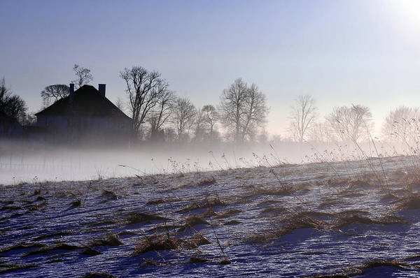 Photograph - Hidden In The Mist by Randi Grace Nilsberg
