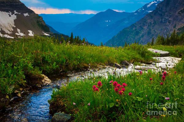 Montana State Photograph - Hidden Lake Pass by Inge Johnsson