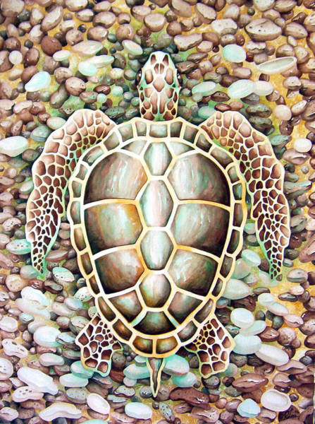 Painting - Hidden Loggerhead by William Love