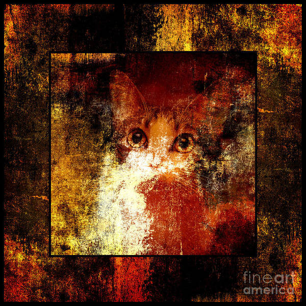 Purebred Mixed Media - Hidden Square by Andee Design