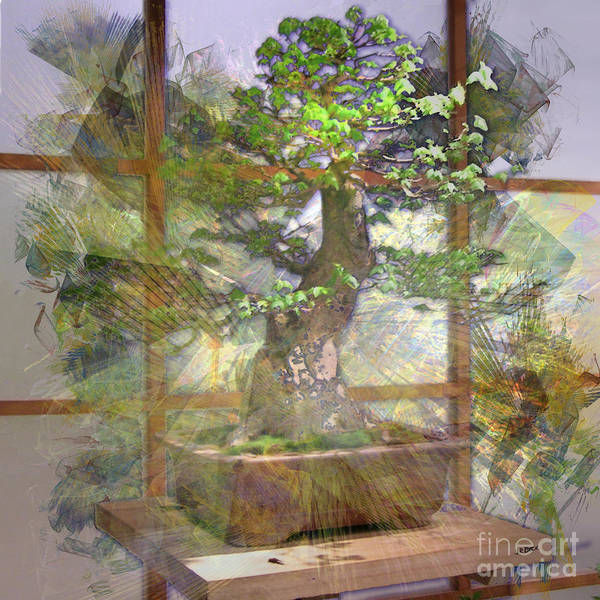 Bonsai Tree Digital Art - Hidden Treasures - Square Version by John Beck
