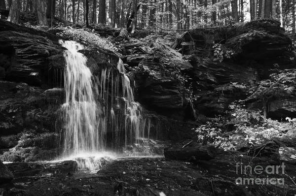 Photograph - Hidden Waterfall by Debra Fedchin