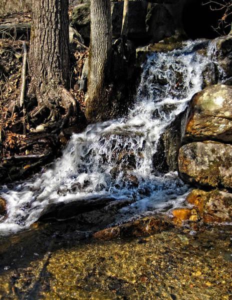 Photograph - Hidden Waterfall by Lara Ellis