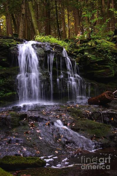 Hidden Waterfalls Of Wayne County I Art Print