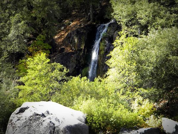 Photograph - Hidden Woodland Waterfall by Frank Wilson