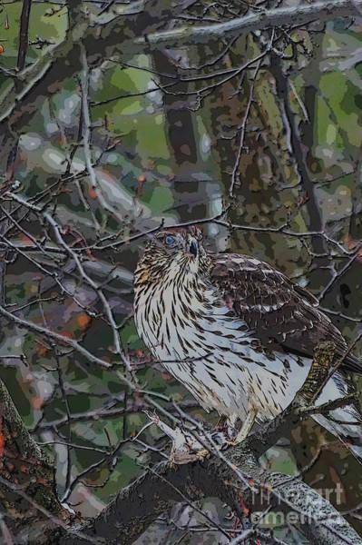 Digital Art - Hiding In Plain Sight by Kathryn Strick