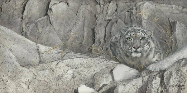 Snow Leopard Wall Art - Painting - Hiding In The Himalayas by Dreyer Wildlife Print Collections