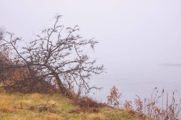 Photograph - Higbee Canal In Fog by Tom Singleton