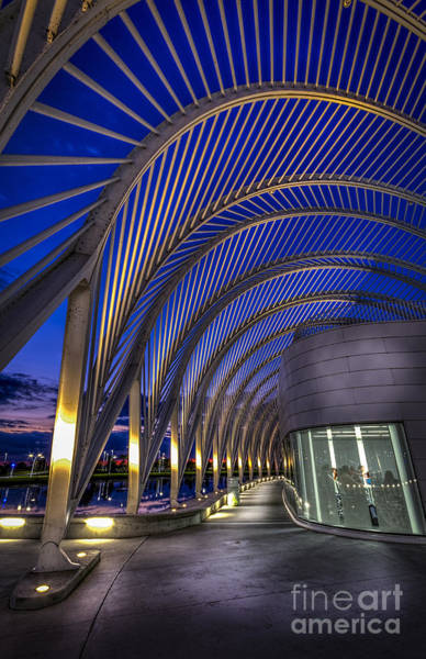 Blue Hour Photograph - High Academics by Marvin Spates