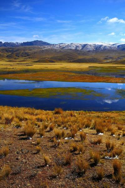 Peru Photograph - High Altitude Reflections by FireFlux Studios
