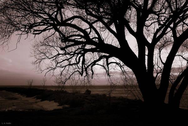Photograph - High Cliff Beauty by Lauren Radke