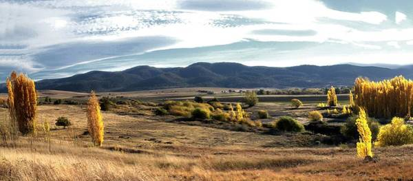 Photograph - High Country Panorama New South Wales by David Rich
