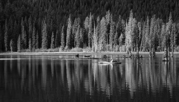 Wall Art - Photograph - High Country Tranquility by Angie Vogel