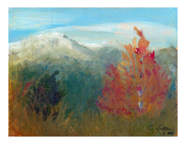 Painting - High Country View by C Sitton