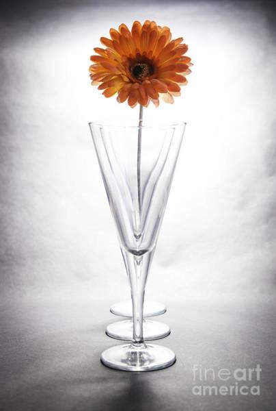 Wall Art - Photograph - High Key Flower In A Glass by Nigel Jones