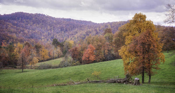 Photograph - High Meadow I by David Waldrop