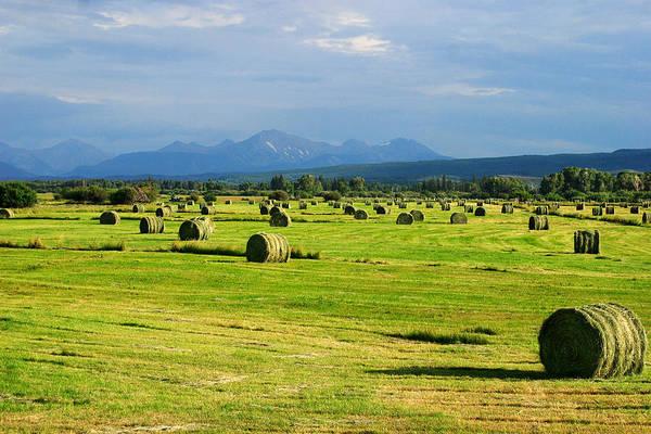 Photograph - High Mountain Farm by TL  Mair