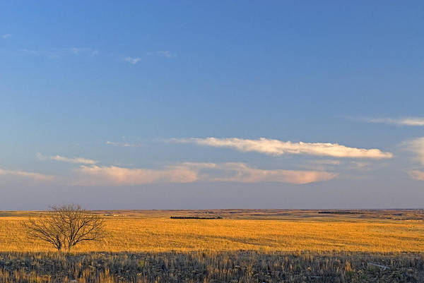 Wall Art - Photograph - High Plains Of North Texas by James Steinberg