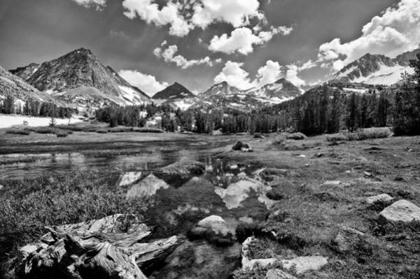 Photograph - High Sierra Meadow by Cat Connor