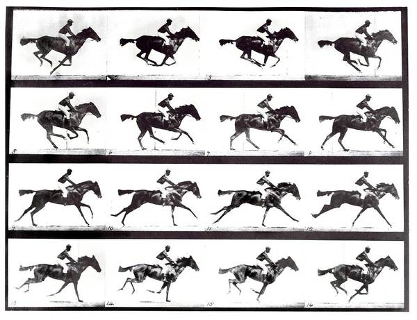 Sequence Photograph - High-speed Sequence Of A Galloping Horse And Rider by Eadweard Muybridge Collection/ Kingston Museum/science Photo Library