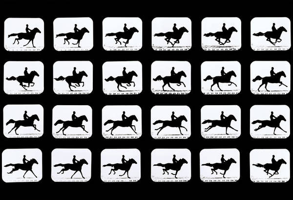 Wall Art - Photograph - High-speed Sequence Of Silhouetted Horse And Rider by Eadweard Muybridge Collection/ Kingston Museum/science Photo Library
