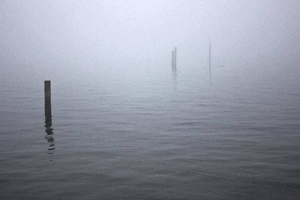 Photograph - High Tide Sentinels by Stephen Prestek