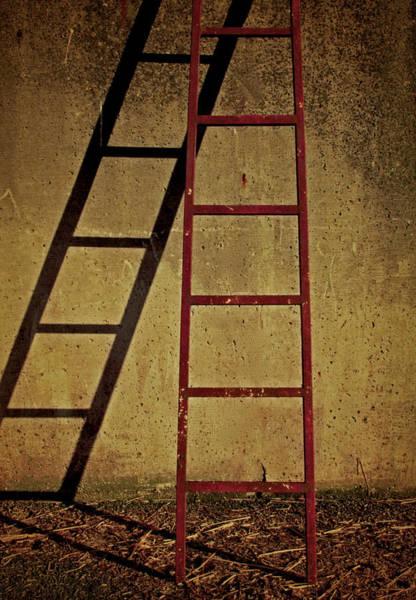 Rungs Wall Art - Photograph - Higher Higher by Odd Jeppesen