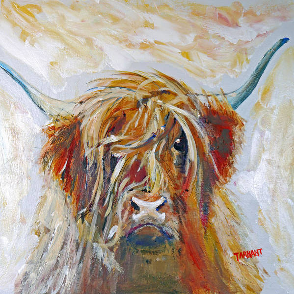 Steer Wall Art - Painting - Highland Cow by Peter Tarrant