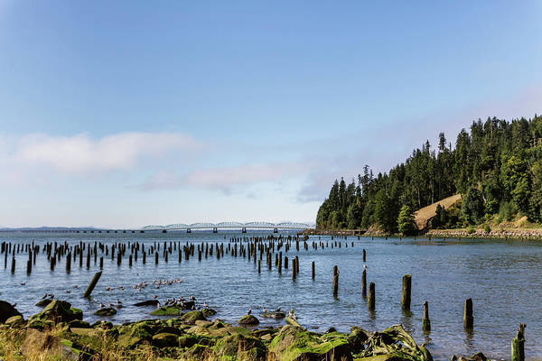 Astoria Photograph - Highway 101 Spans Over Columbia River by Sawaya Photography