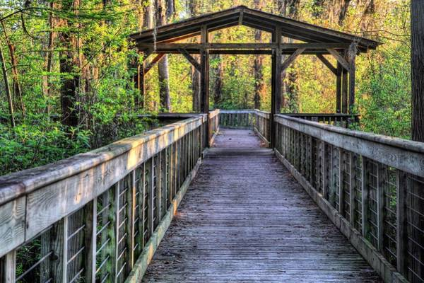 Wall Art - Photograph - Hike Alabama State Parks by JC Findley