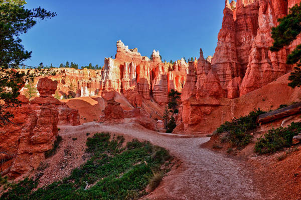 Photograph - Hike Through The Hoodoos by Greg Norrell