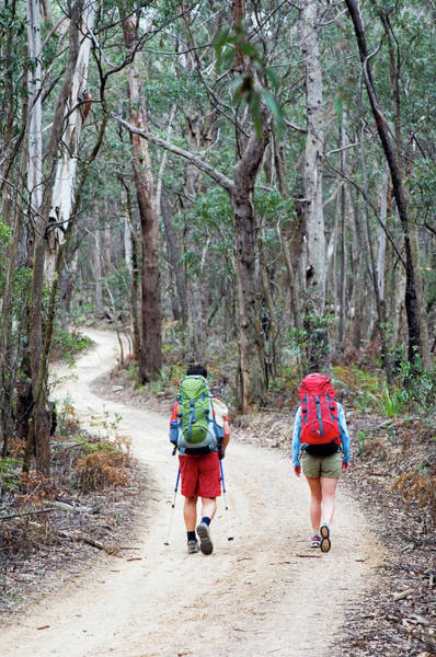 Wall Art - Photograph - Hikers With Backpacks Walk Along Trail by Lars Schneider