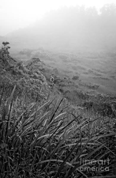Photograph - Hiking On Maui Hawaii by Edward Fielding
