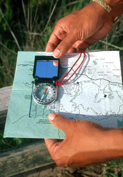 Contour Map Photograph - Hiking With A Compass And Map by David Weintraub