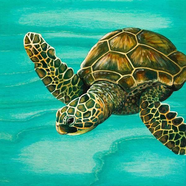 Honu Wall Art - Painting - Hilahila Shy Sea Turtle by Emily Brantley