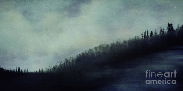 Treeline Photograph - Hillcrest by Priska Wettstein