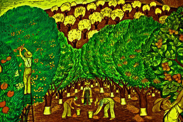 Photograph - Hillside Orchard Workers by Joseph Coulombe