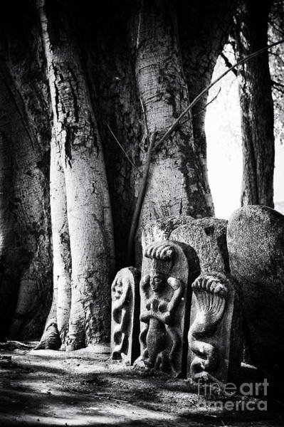 Indian Banyan Photograph - Hindu Shrine by Tim Gainey