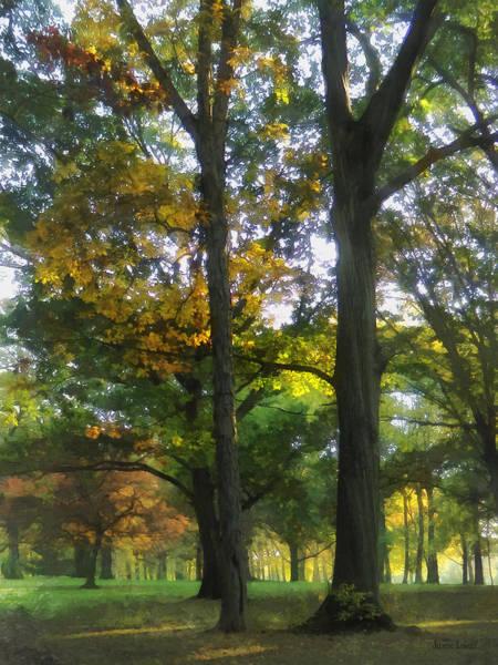 Photograph - Hint Of Autumn by Susan Savad